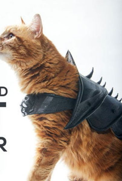 3d printed cat armor